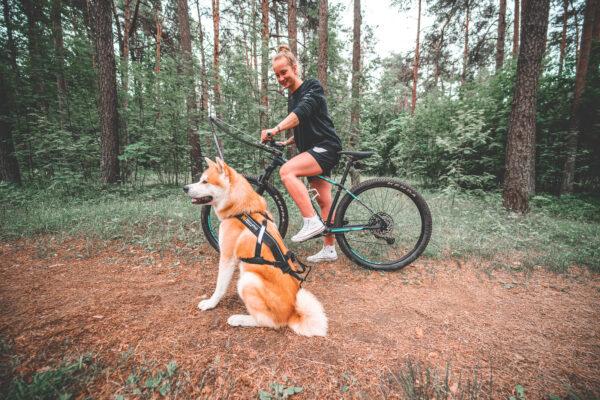 Antenne protection roue avant vélo