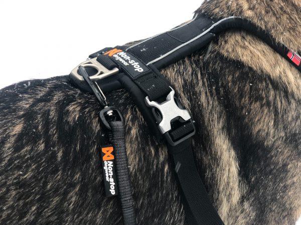 laisse solide et légère non-stop dogwear sport montagne
