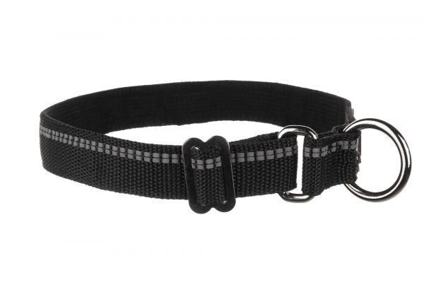 Collier chien polypro