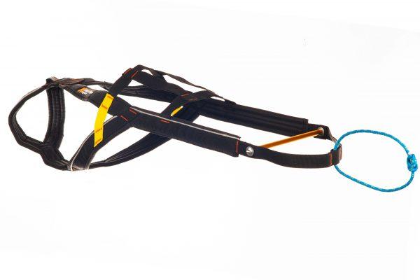 Aktivity harnais traineau pour chien