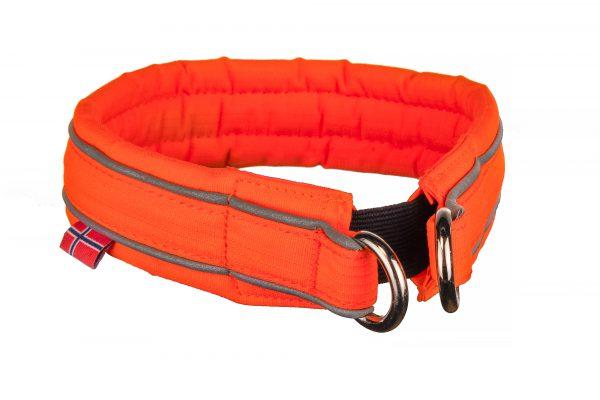 Safe collar dog