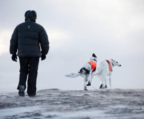 protection pattes chien haute qualité Non-stop Dogwear black